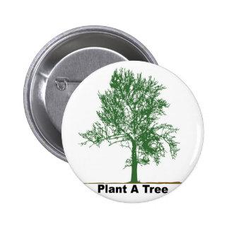 plante un árbol pin redondo de 2 pulgadas