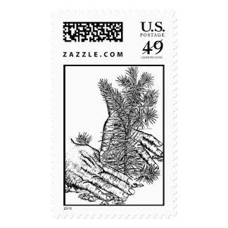 Plante un árbol sellos