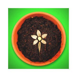 Plante una lona de la flor lienzo envuelto para galerias