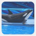 Planteamiento de los pegatinas de la orca