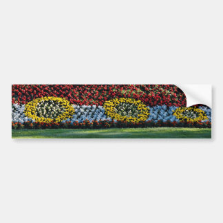 Planted flowers shaped like train engine flowers bumper stickers