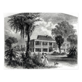Planter's House on the Mississippi Postcard