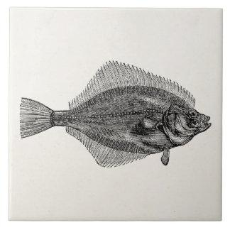 Plantilla acuática de los pescados de los pescados azulejo cuadrado grande