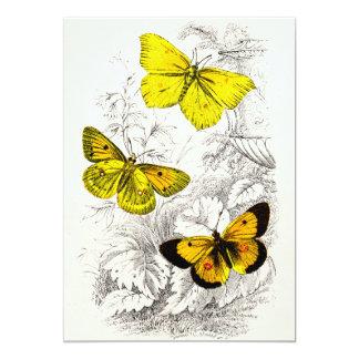 """Plantilla amarillo-naranja de las mariposas de los invitación 5"""" x 7"""""""