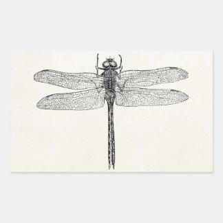Plantilla americana de la mosca del dragón de la pegatina rectangular