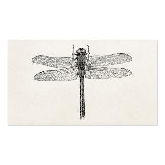 Plantilla americana de la mosca del dragón de la tarjetas de visita
