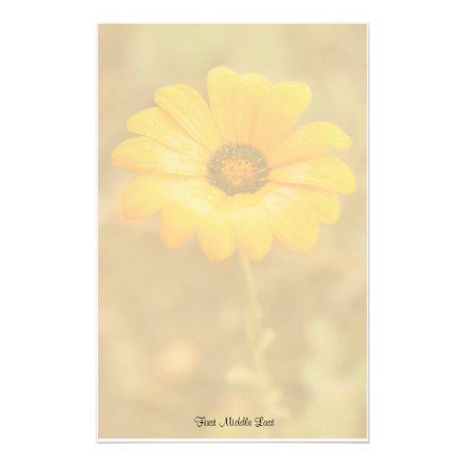 Plantilla anaranjada de la foto de la margarita af papelería