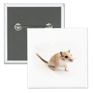 Plantilla animal de los Gerbils del mascota del Pin Cuadrada 5 Cm
