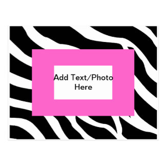 Plantilla blanca rosada de la cebra tarjetas postales