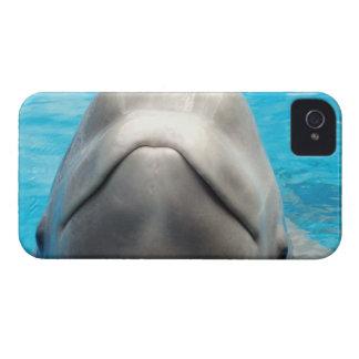 plantilla Ca del iphone 4 apenas allí QPC - iPhone 4 Case-Mate Carcasas