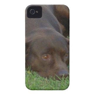 plantilla Ca del iphone 4 apenas allí QPC - iPhone 4 Case-Mate Cobertura