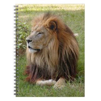 Plantilla-Cuaderno (8x10) Spiral Notebook