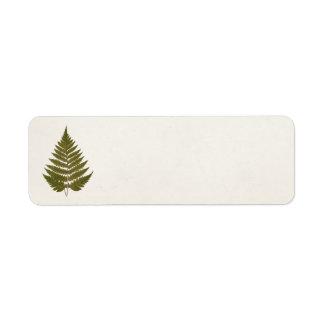 Plantilla de la hoja del helecho del verde verde etiquetas de remite