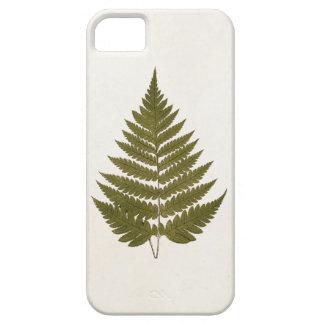 Plantilla de la hoja del helecho del verde verde funda para iPhone SE/5/5s