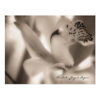 Plantilla de la postal - orquídea de la sepia (fot
