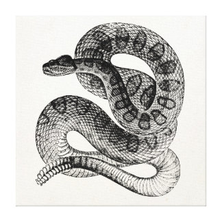 Plantilla de la serpiente del reptil de la impresión en lienzo