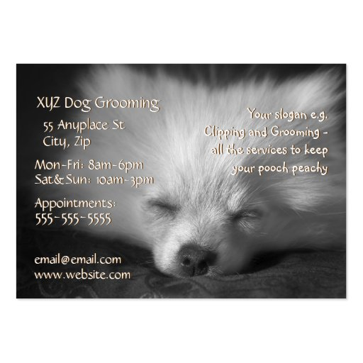 Plantilla de la tarjeta de la empresa de servicios tarjetas de visita