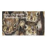 Plantilla de la tarjeta de visita de la ardilla