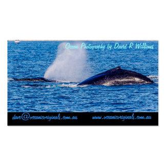 Plantilla de la tarjeta de visita de las ballenas