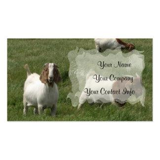 Plantilla de la tarjeta de visita de las cabras
