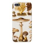Plantilla de la variedad de la seta de los 1800s d iPhone 5 cárcasa