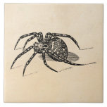 Plantilla de las arañas del ejemplo de la araña de tejas  cerámicas