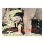 Plantilla de las invitaciones del elefante del anuncio
