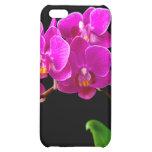 Plantilla de las orquídeas de la flor de la orquíd