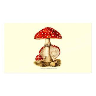 Plantilla de las setas del rojo de la seta de los  tarjetas de visita