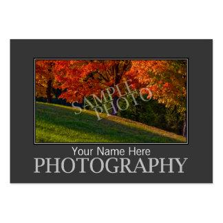 Plantilla de las tarjetas de visita de la fotograf