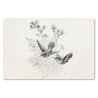 Plantilla de los pájaros de la antigüedad del papel de seda pequeño