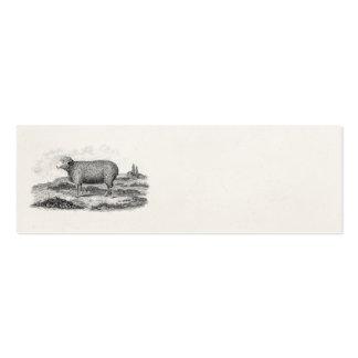 Plantilla del cordero de la oveja de las ovejas me tarjetas de visita