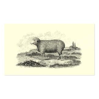 Plantilla del cordero de la oveja de las ovejas me plantillas de tarjetas de visita