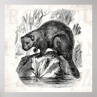 Plantilla del ejemplo de los castores de los 1800s póster