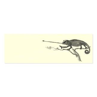 Plantilla del ejemplo del camaleón del lagarto del tarjeta de visita