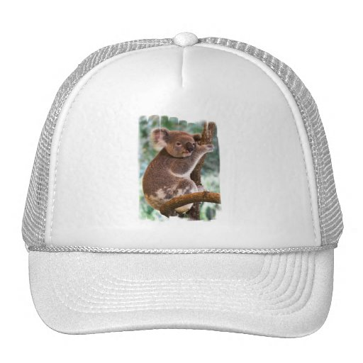 Plantilla del gorra - modificada para requisitos p