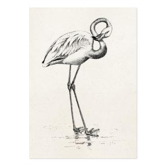 Plantilla del pájaro de la antigüedad del pájaro tarjetas de visita grandes