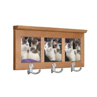 Plantilla del personalizable de los gatos del
