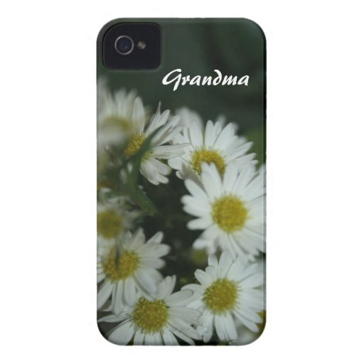 PLANTILLA FLORAL PERSONALIZADA DE LA CAJA DE LA CARCASA PARA iPhone 4