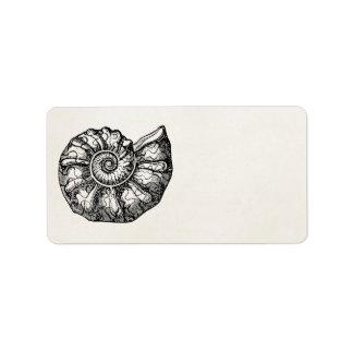 Plantilla fósil de Shell del Seashell de la Etiquetas De Dirección