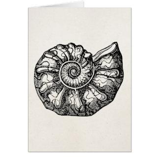 Plantilla fósil de Shell del Seashell de la Tarjeta Pequeña