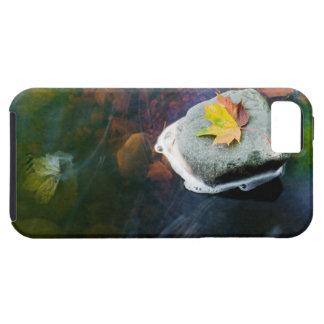 Plantilla horizontal funda para iPhone SE/5/5s