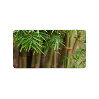 Plantilla modificada para requisitos particulares  etiquetas de dirección