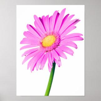 Plantilla modificada para requisitos particulares  póster