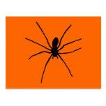 Plantilla negra de la araña tarjeta postal