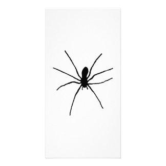 Plantilla negra de la araña tarjetas personales con fotos