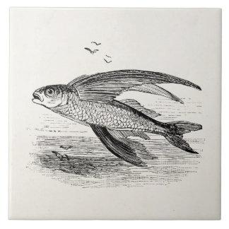 Plantilla personalizada antigüedad del pez volador azulejo cuadrado grande