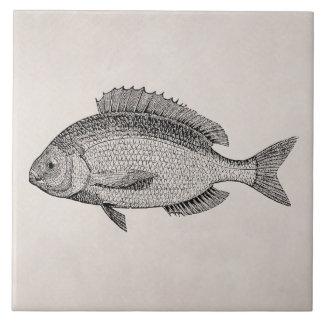 Plantilla retra de los pescados de los pescados de azulejo cuadrado grande