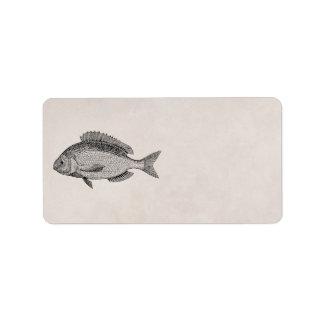Plantilla retra de los pescados de los pescados de etiquetas de dirección