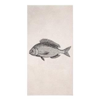 Plantilla retra de los pescados de los pescados de tarjetas personales